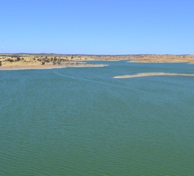 rsv54 herd gde lago 1