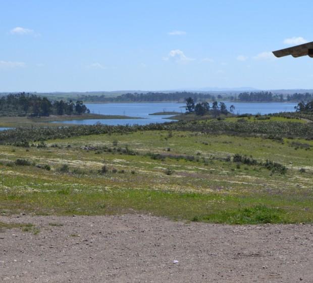 rsv75 herd mte lago 1