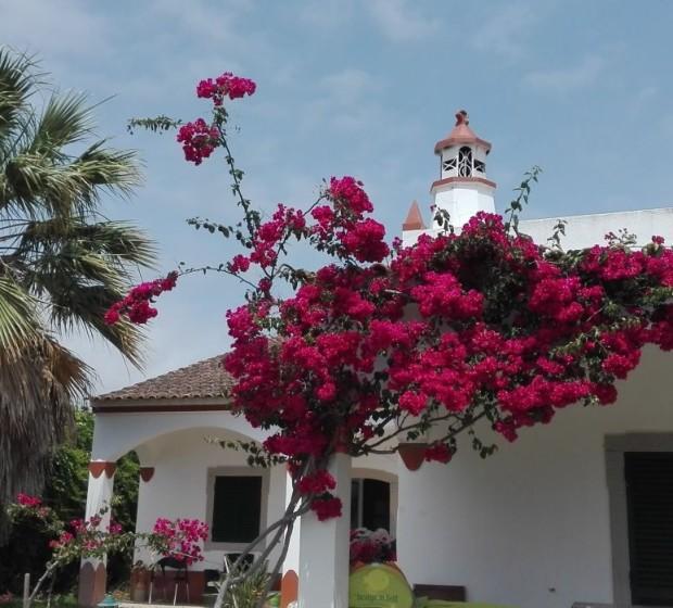 rsv130 Casa dos Bicos 1
